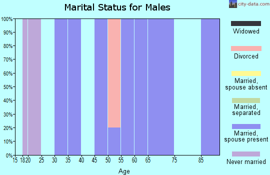 Zip code 88120 marital status for males