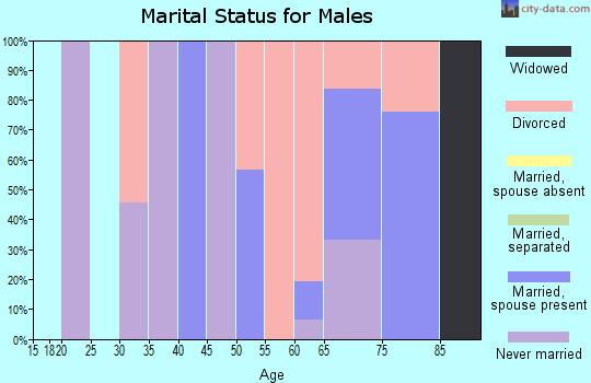 Zip code 89046 marital status for males