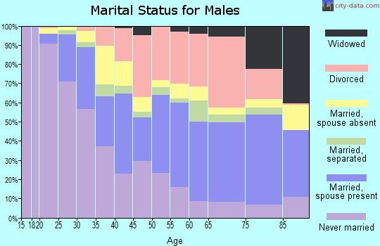 Zip code 89102 marital status for males