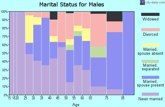 Zip code 89109 marital status for males