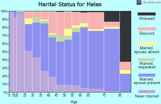 Zip code 89130 marital status for males