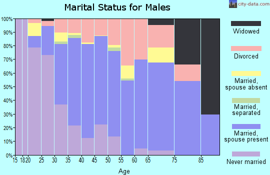 Zip code 89141 marital status for males