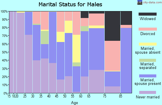 Zip code 89415 marital status for males