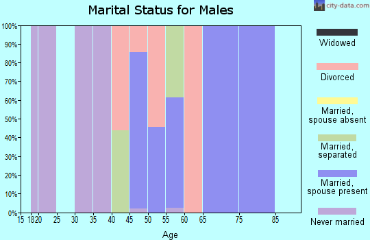 Zip code 89440 marital status for males