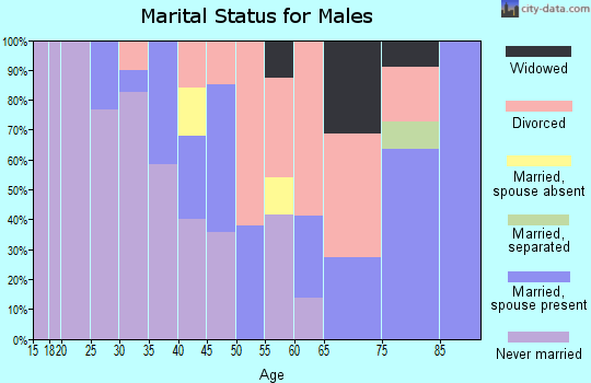 Zip code 89832 marital status for males