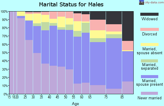 Zip code 90063 marital status for males
