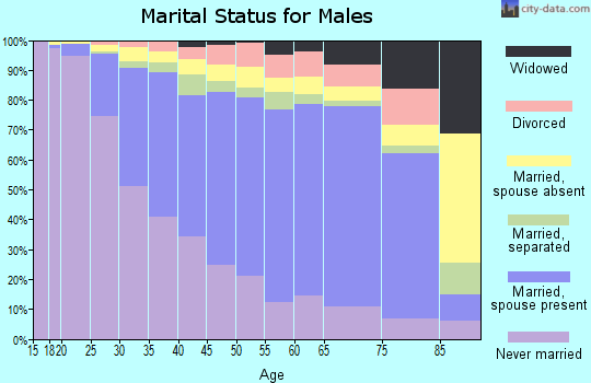 Zip code 90201 marital status for males
