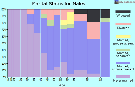 Zip code 90211 marital status for males
