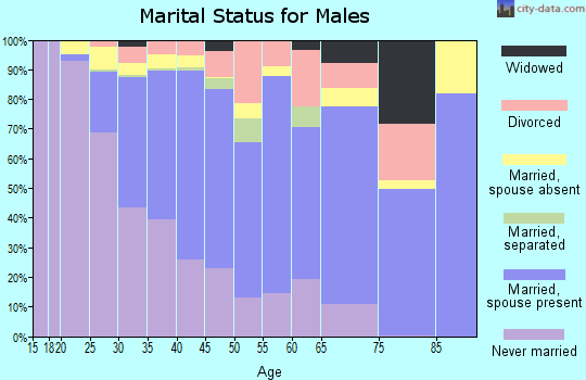 Zip code 90260 marital status for males