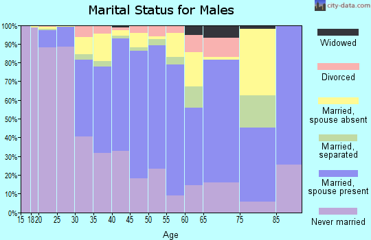 Zip code 90304 marital status for males