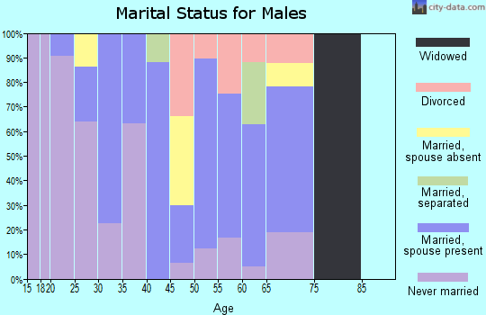 Zip code 90704 marital status for males