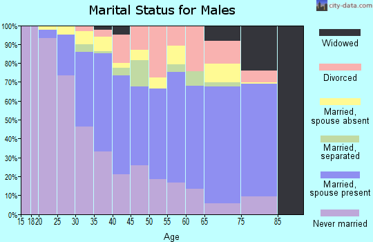 Zip code 91303 marital status for males