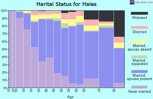 Zip code 91732 marital status for males