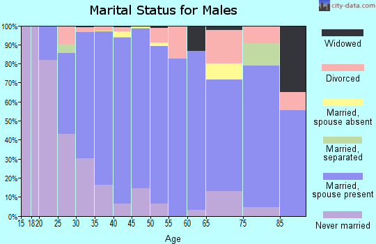 Zip code 91913 marital status for males