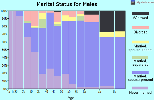 Zip code 92029 marital status for males