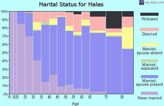 Zip code 92065 marital status for males
