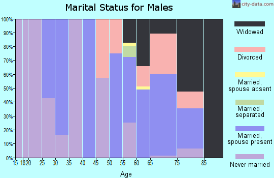 Zip code 92257 marital status for males