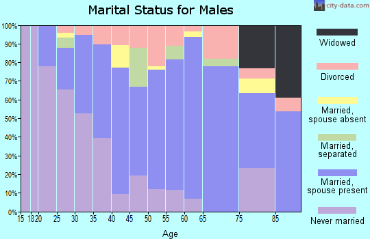 Zip code 92313 marital status for males
