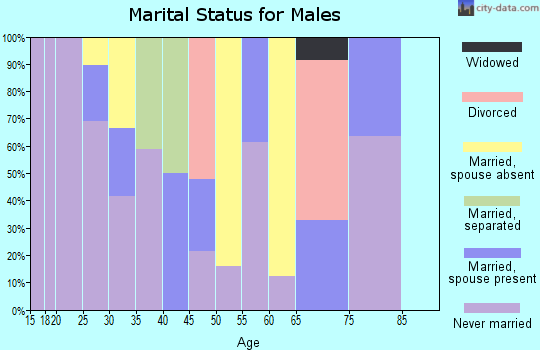 Zip code 92401 marital status for males