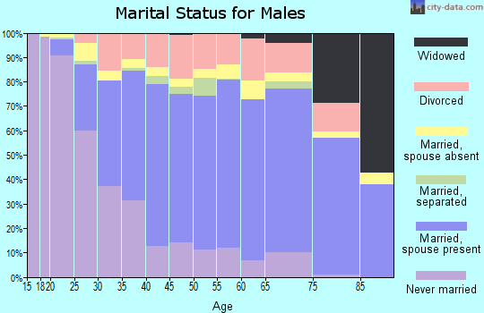 Zip code 92505 marital status for males