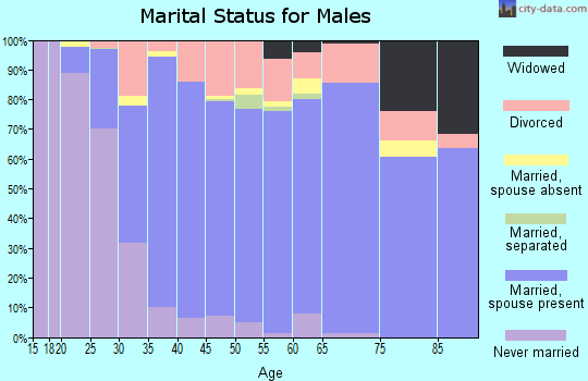 Zip code 92591 marital status for males