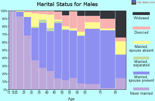Zip code 93060 marital status for males
