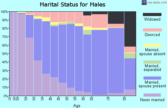 Zip code 93063 marital status for males