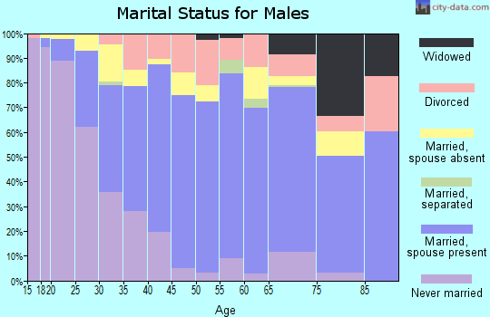 Zip code 93247 marital status for males