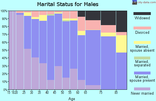 Zip code 93402 marital status for males