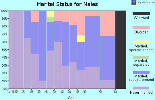 Zip code 94005 marital status for males