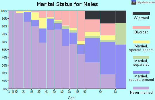 Zip code 94102 marital status for males
