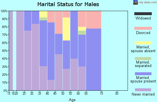 Zip code 94105 marital status for males