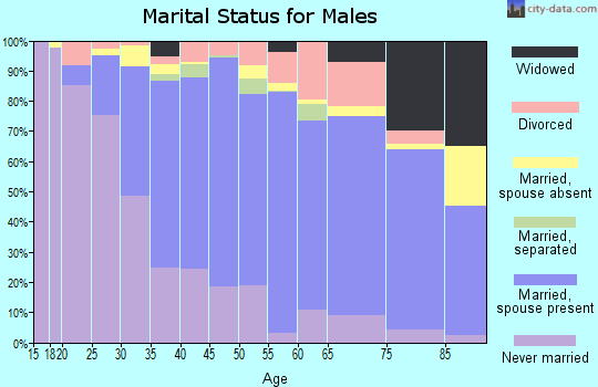 Zip code 94545 marital status for males