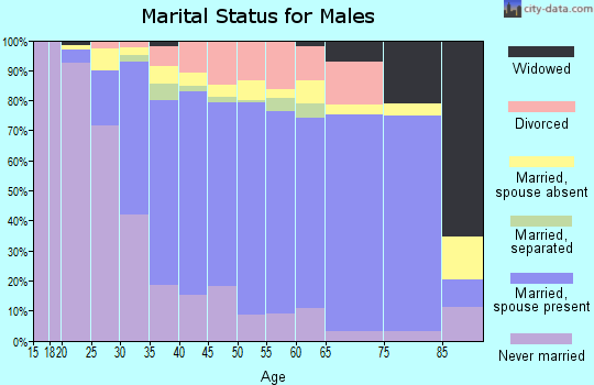 Zip code 94568 marital status for males