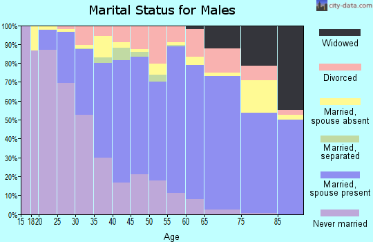 Zip code 94585 marital status for males