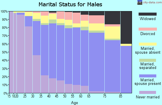 Zip code 95035 marital status for males