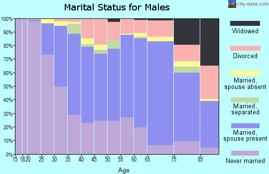 Zip code 95050 marital status for males