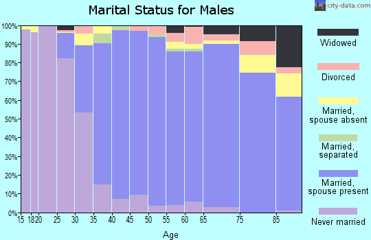 Zip code 95070 marital status for males