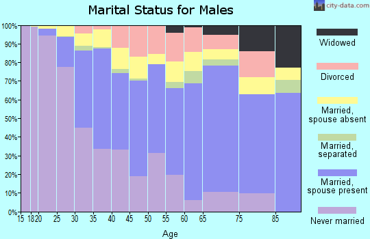 Zip code 95116 marital status for males