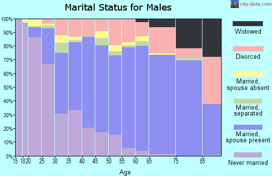 Zip code 95301 marital status for males