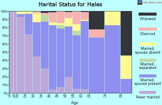 Zip code 95334 marital status for males