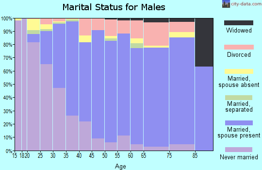 Zip code 95356 marital status for males