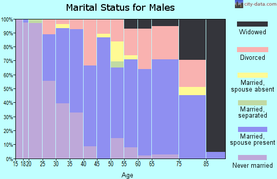 Zip code 95386 marital status for males