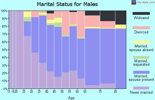 Zip code 95404 marital status for males