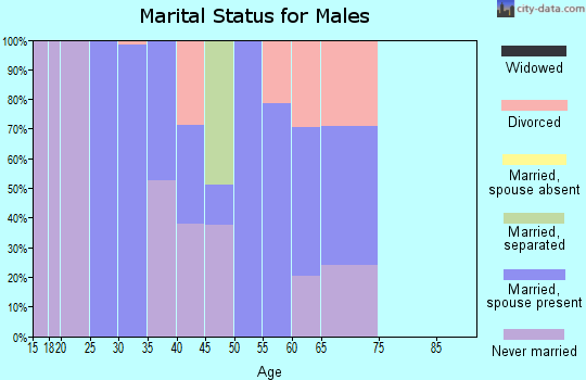 Zip code 95426 marital status for males
