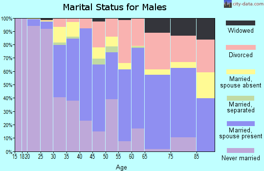Zip code 95437 marital status for males