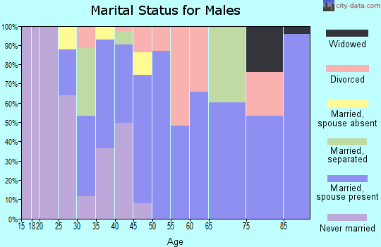 Zip code 95619 marital status for males