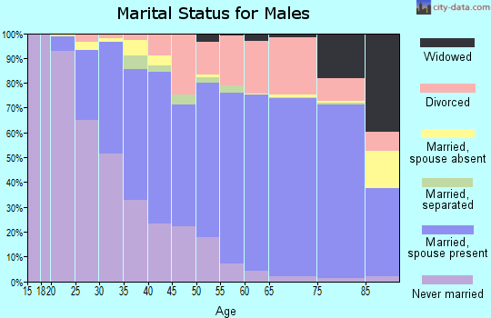 Zip code 95667 marital status for males