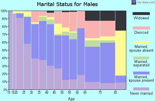 Zip code 95838 marital status for males