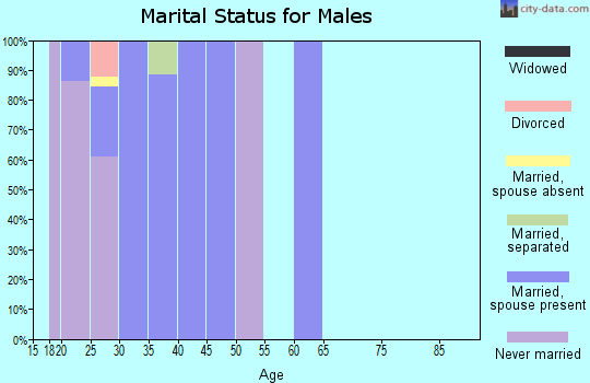 Zip code 95903 marital status for males